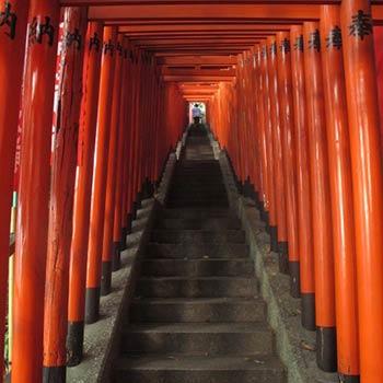 Temple, Tokyo