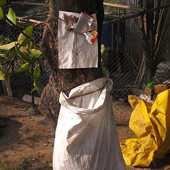 Arrow to Rubbish bag; Dehra Dun, Northern India