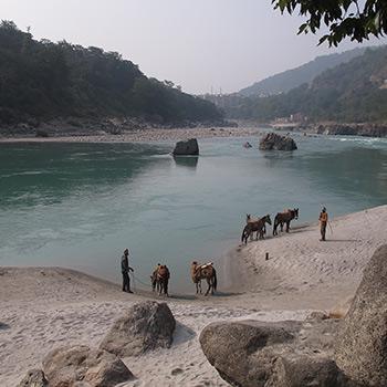 The Ganges, Rishikesh